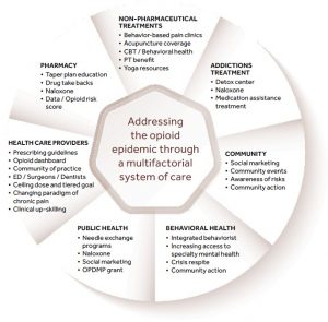Addressing the opioid epidemic through a multifactorial system of care
